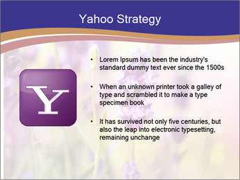 0000079836 PowerPoint Template - Slide 11