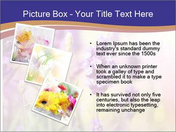 0000079836 PowerPoint Template - Slide 17
