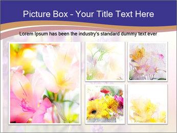 0000079836 PowerPoint Template - Slide 19