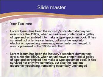 0000079836 PowerPoint Template - Slide 2