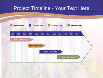 0000079836 PowerPoint Template - Slide 25