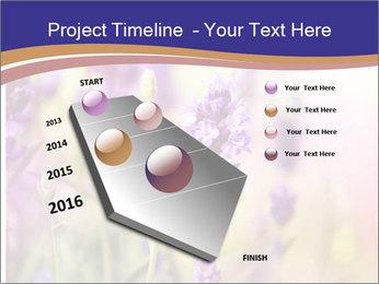 0000079836 PowerPoint Template - Slide 26