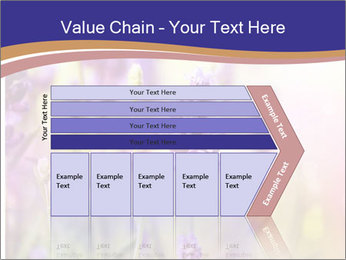 0000079836 PowerPoint Template - Slide 27