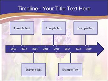 0000079836 PowerPoint Template - Slide 28
