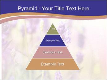 0000079836 PowerPoint Template - Slide 30