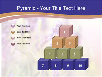 0000079836 PowerPoint Template - Slide 31