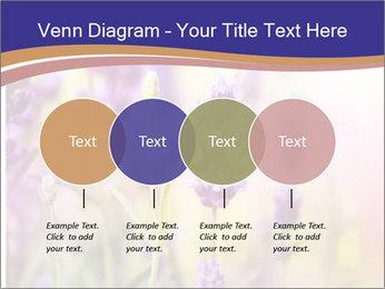 0000079836 PowerPoint Template - Slide 32