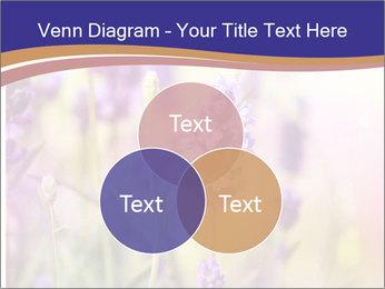 0000079836 PowerPoint Template - Slide 33