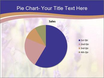 0000079836 PowerPoint Template - Slide 36