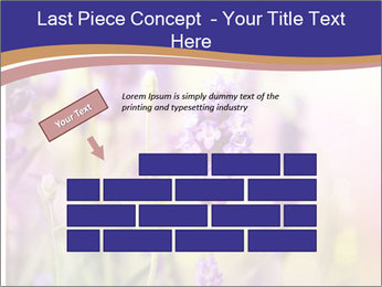 0000079836 PowerPoint Template - Slide 46