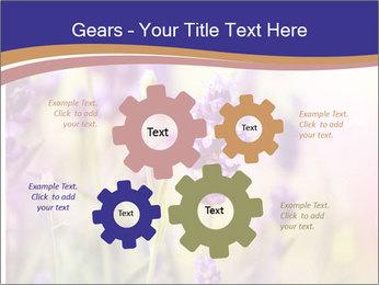 0000079836 PowerPoint Template - Slide 47