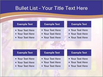 0000079836 PowerPoint Template - Slide 56
