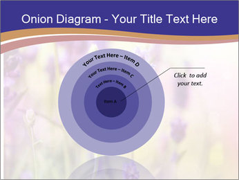 0000079836 PowerPoint Template - Slide 61
