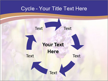 0000079836 PowerPoint Template - Slide 62