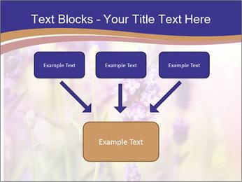 0000079836 PowerPoint Template - Slide 70