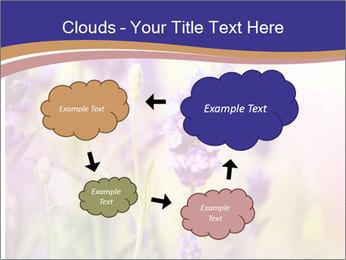 0000079836 PowerPoint Template - Slide 72