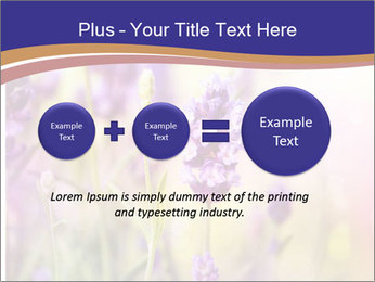 0000079836 PowerPoint Template - Slide 75