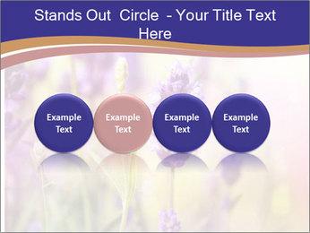 0000079836 PowerPoint Template - Slide 76