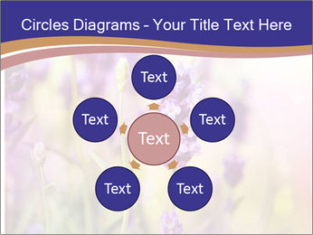 0000079836 PowerPoint Template - Slide 78
