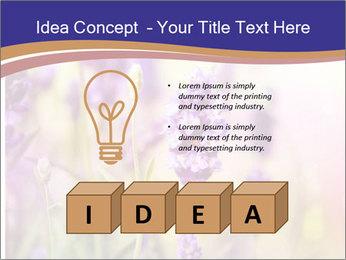 0000079836 PowerPoint Template - Slide 80