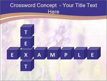 0000079836 PowerPoint Template - Slide 82