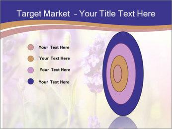 0000079836 PowerPoint Template - Slide 84