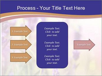 0000079836 PowerPoint Template - Slide 85