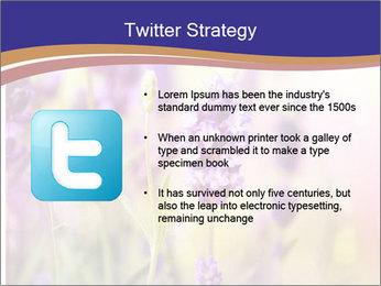 0000079836 PowerPoint Template - Slide 9