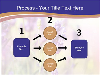 0000079836 PowerPoint Template - Slide 92