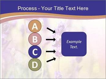 0000079836 PowerPoint Template - Slide 94