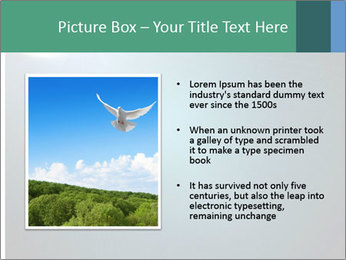 0000079844 PowerPoint Templates - Slide 13