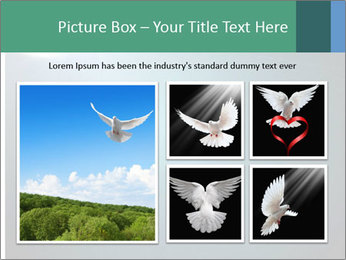 0000079844 PowerPoint Templates - Slide 19