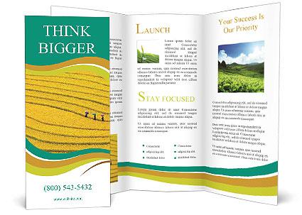 0000079849 Brochure Templates