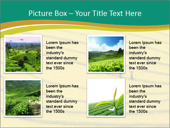 0000079849 PowerPoint Templates - Slide 14