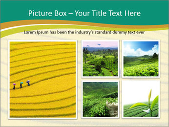 0000079849 PowerPoint Templates - Slide 19