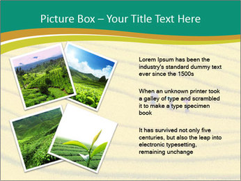 0000079849 PowerPoint Templates - Slide 23