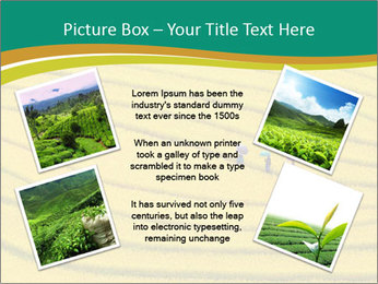 0000079849 PowerPoint Templates - Slide 24
