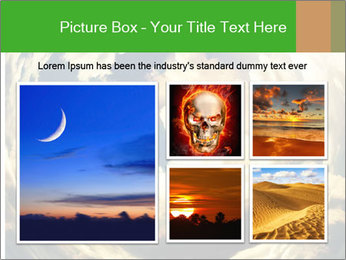 0000079851 PowerPoint Template - Slide 19