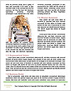0000079852 Word Templates - Page 4