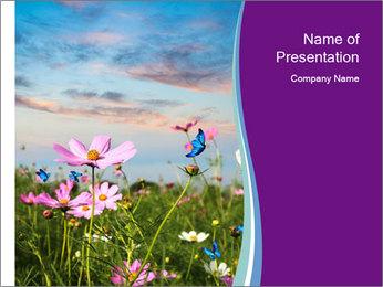 0000079853 PowerPoint Template - Slide 1