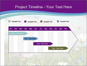 0000079853 PowerPoint Template - Slide 25