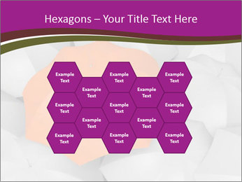 0000079864 PowerPoint Templates - Slide 44