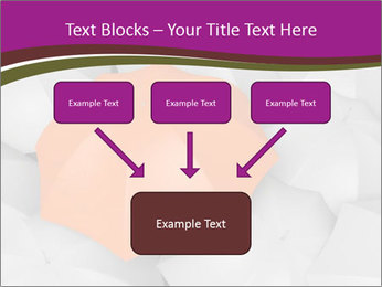 0000079864 PowerPoint Templates - Slide 70