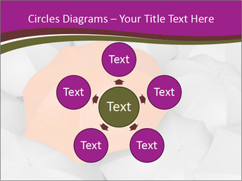 0000079864 PowerPoint Templates - Slide 78