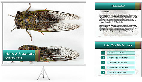 0000079871 PowerPoint Template