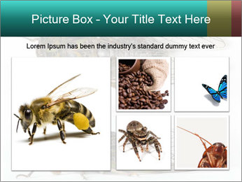0000079871 PowerPoint Template - Slide 19