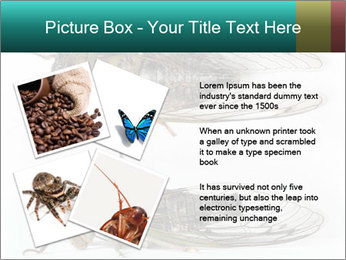 0000079871 PowerPoint Template - Slide 23