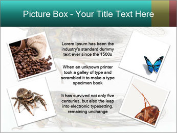 0000079871 PowerPoint Template - Slide 24