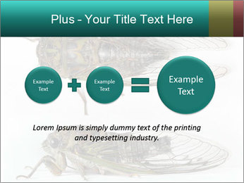 0000079871 PowerPoint Template - Slide 75