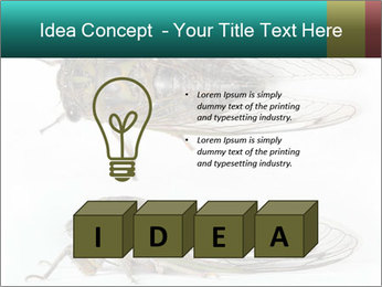 0000079871 PowerPoint Template - Slide 80